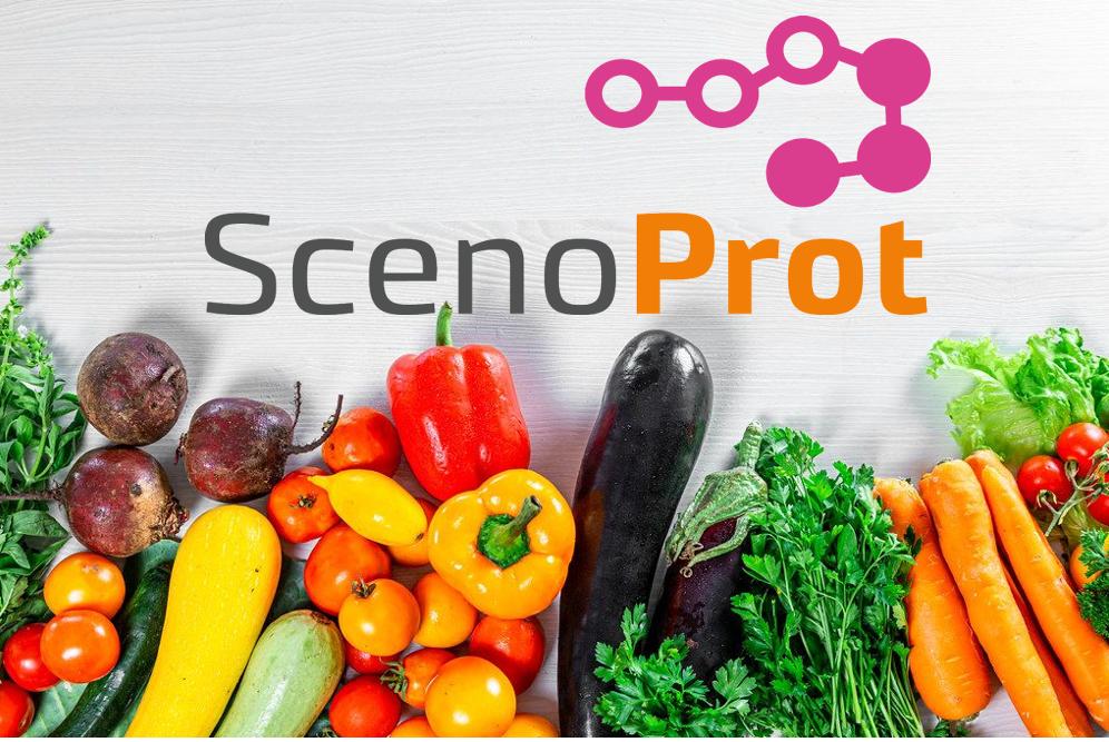 Tutkimustuloksia: Eläinproteiinin osittainen korvaaminen kasviproteiinilla ja luuston terveys